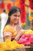 Keerthi Suresh Film Actress New Album 8227