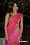 Albums Kesha Khambhati Tamil Actress 6049
