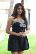 Kesha Khambhati 3182