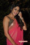 Kesha Khambhati Cinema Actress May 2015 Gallery 2764