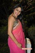 Kesha Khambhati South Actress New Gallery 3429