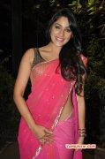 Kesha Khambhati South Actress Recent Images 5505