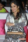 Madhavi Latha Oct 2014 Pictures 9238