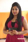 New Photos Movie Actress Madhavi Latha 344