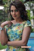Latest Images South Actress Madhu Shalini 7682