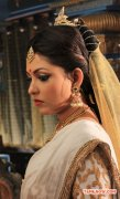 Madhu Shalini Stills 7815