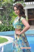 New Pics Madhu Shalini Tamil Movie Actress 5976