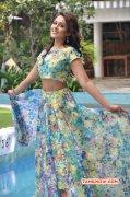 Recent Still Tamil Actress Madhu Shalini 5618