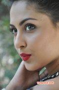Recent Gallery Heroine Madhushalini 2470