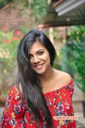 Latest Gallery Madonna Sebastian Tamil Movie Actress 9905