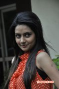 Dec 2014 Gallery Indian Actress Mahima 8616