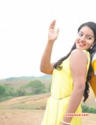 New Pictures Actress Malavika Menon 9828