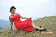 Pics Movie Actress Malavika Menon 7444