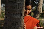 Tamil Actress Malavika Menon Stills 4227