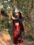 Cinema Actress Malavika Mohanan Pics 6331