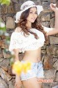 2016 Wallpapers Tamil Movie Actress Manali Rathod 3816