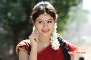 Latest Stills Tamil Heroine Manali Rathod 5703