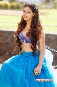 South Actress Manali Rathod New Pics 9722