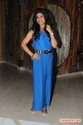 Manisha Shree Stills 9253