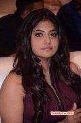 Manjima Mohan Indian Actress Jun 2016 Wallpapers 7929