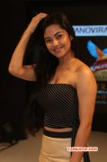 2014 Pictures Meera Chopra South Actress 9051