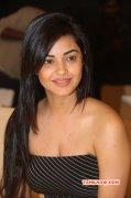 2014 Stills Tamil Heroine Meera Chopra 9097