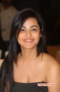 Latest Still Meera Chopra 2752