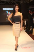Meera Chopra Film Actress 2014 Images 3234