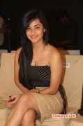 Tamil Actress Meera Chopra New Albums 6749