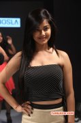 Wallpaper Actress Meera Chopra 9169