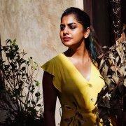 2020 Pictures Indian Actress Meera Nandan 8520
