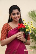Latest Pics Meera Nandan Tamil Heroine 9953