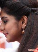 Meera Nandan 3077