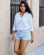 Meera Nandan Tamil Heroine Recent Still 2320