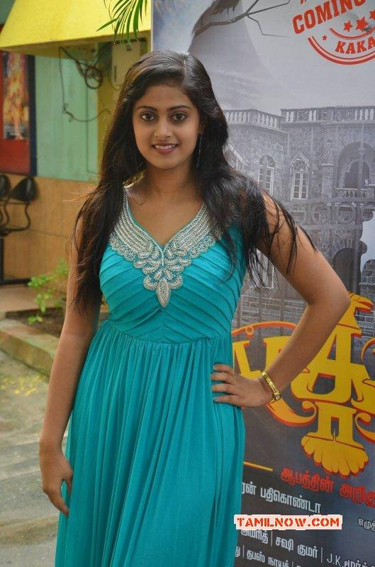 2015 Photo Megha Shree Cinema Actress 1641