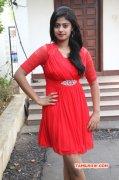 Latest Album Megha Shree 9663
