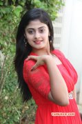 Megha Shree Tamil Movie Actress 2015 Still 161