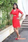 Movie Actress Megha Shree Latest Wallpapers 6092