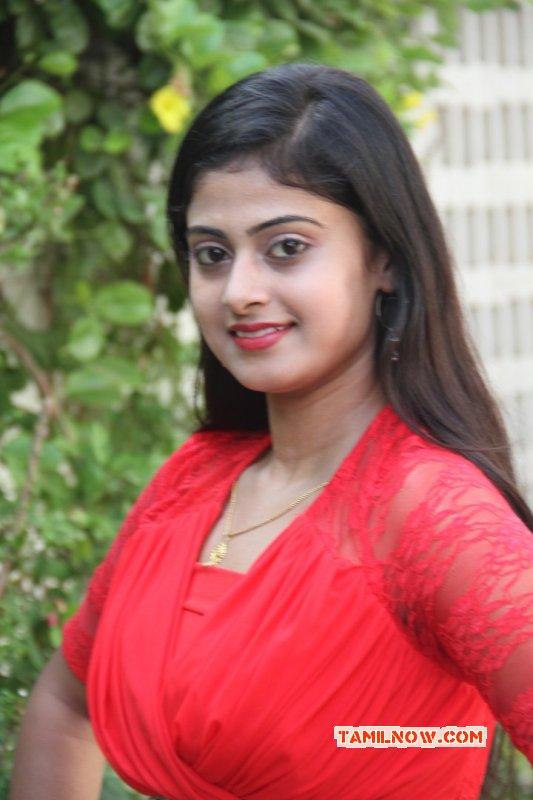 New Gallery Cinema Actress Megha Shree 3751