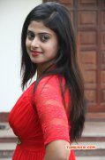 Recent Image Megha Shree Cinema Actress 4037