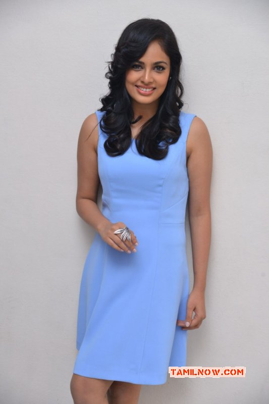Nandita Swetha Latest Still 7246