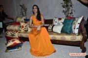 Actress Nargis Fakhri 3955