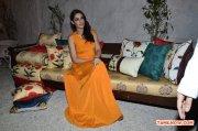 Tamil Actress Nargis Fakhri Photos 3421
