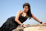 Actress Nayantara Stills 8150