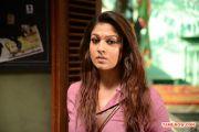 Tamil Actress Nayantara 430