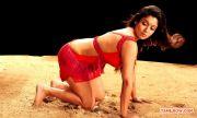 Tamil Actress Nayantara Photos 5633