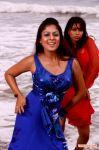 Tamil Actress Nayantara Photos 5771