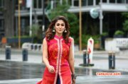 Recent Pictures Nayanthara Movie Actress 5640