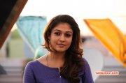 South Actress Nayanthara Album 3158