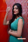 Latest Albums Neelam Upadhyaya South Actress 2637